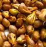 Органическое масло макадамии