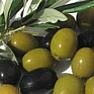Органическое масло оливы